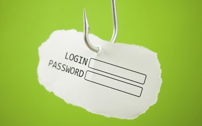 Le frodi in internet: Il phishing